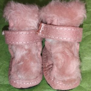 Puppy Shoes size 2